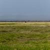 CS7G0002-20120320-Tuesday at Amboseli-0001