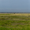 CS7G0003-20120320-Tuesday at Amboseli-0003