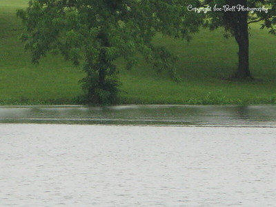 20100616-LakeShawneeAfterTheRain-10