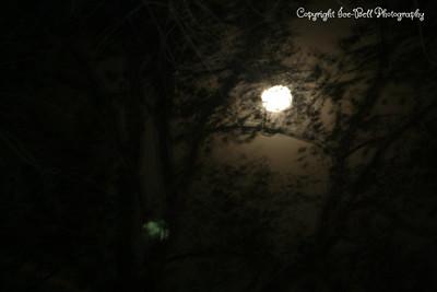 20081213-Moon-02