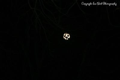 20081213-Moon-01