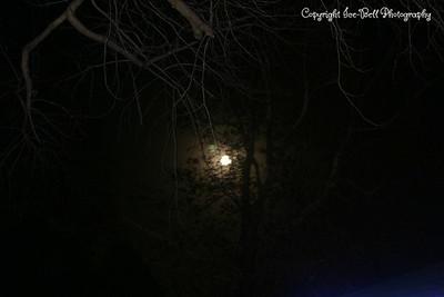 20081213-Moon-08