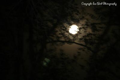 20081213-Moon-04