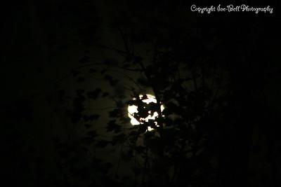 20081213-Moon-07