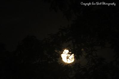 20130823-Moon-04