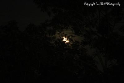 20130823-Moon-01