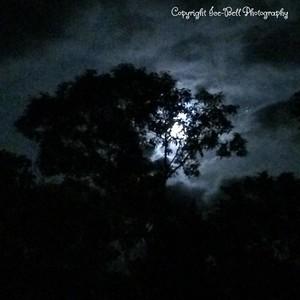 20141008-Moon-01