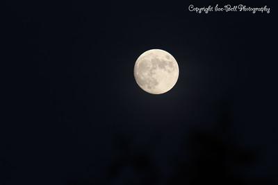 20141105-Moon-01