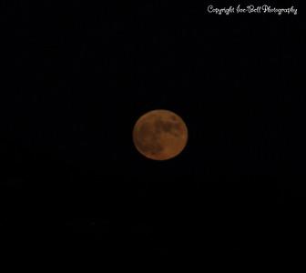 20141106-Moon-01