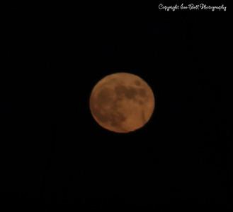 20141106-Moon-02