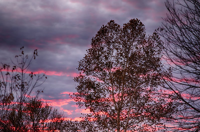 20191113-AirlineGraphicsBransonMO-Sunset-1