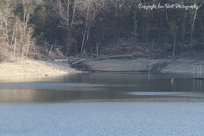 20130201-TableRockLake-10
