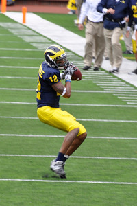 Roundtree with the Catch