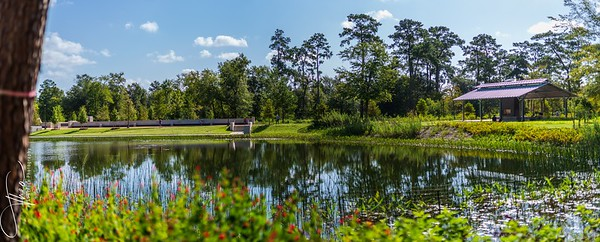 Memorial Park - Hines Lake with Pavilion