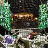 San Diego County Fair0007