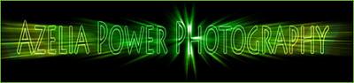 ps banner litl