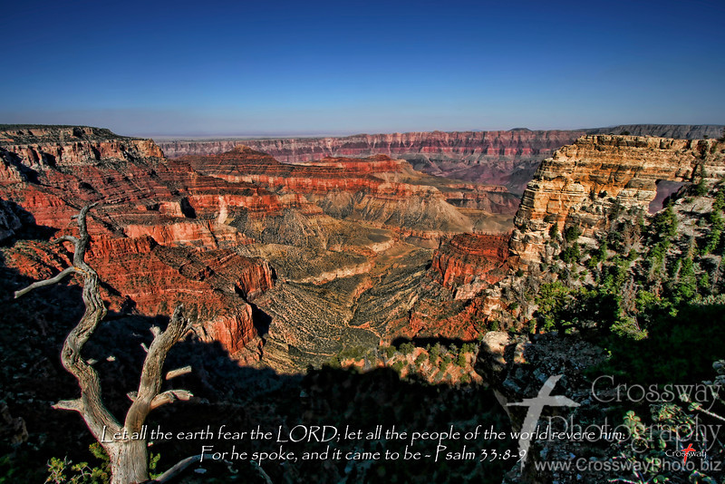 Spoke into Being - North Rim Grand Canyon, Arizona