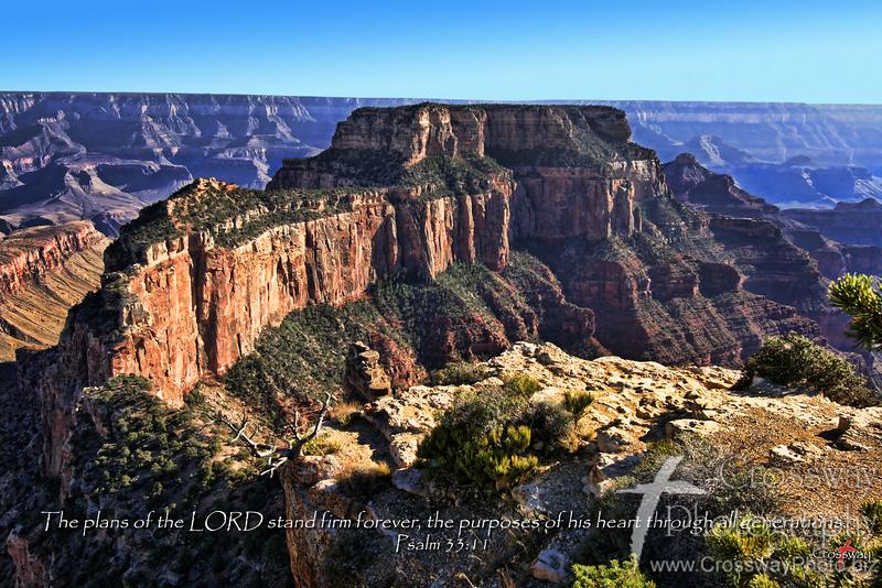 Firm Foundation - North Rim Grand Canyon National Park, Arizona