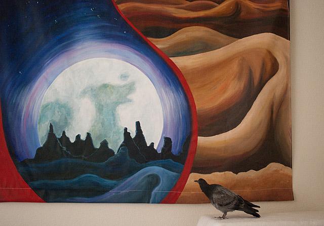 An art admiring Pigeon (Rock Dove)