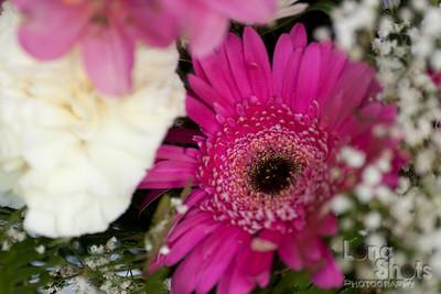 20090618-flowers-113