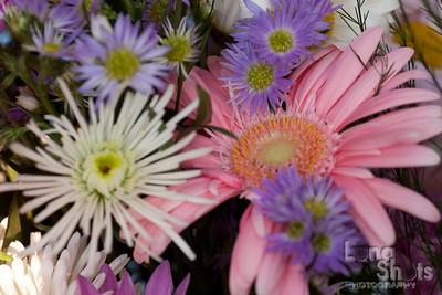 20090618-flowers-115