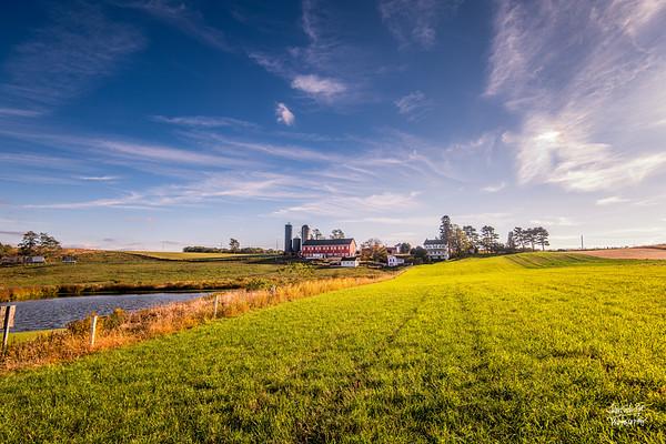 Stahl Dairy Farm IV