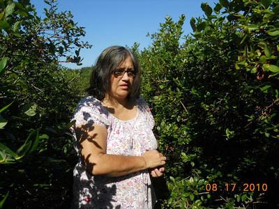 Delfina picking Blue berries  in Holland, MI.