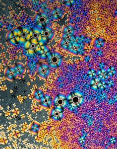 polarized crystalized benzil on 4x5 chrome film