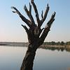 Africa2004_175_168