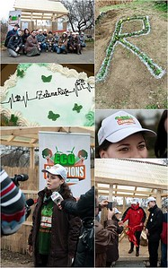 Proiect de voluntariat EcoChampions Constanta