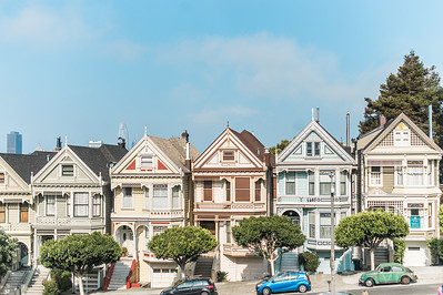 Painted Ladies | San Francisco, California