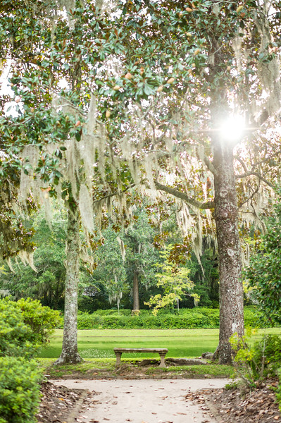 Magnolia Plantation | Charleston, South Carolina