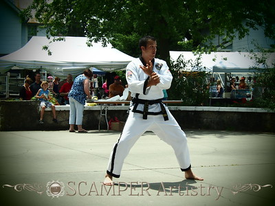 American Tae Kwon Do 2013 at the Cherry Fest - Whitehouse, OH, June 15, 2013
