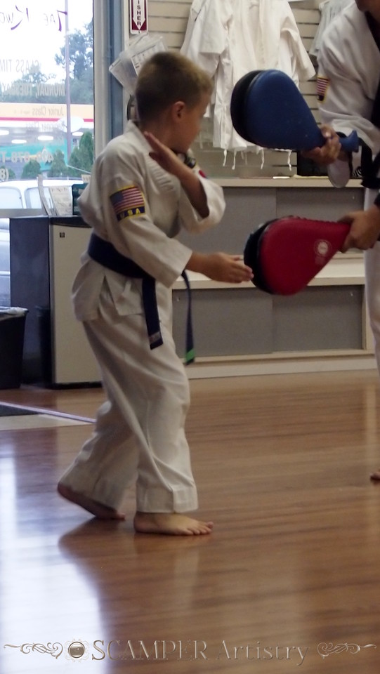 American Tae Kwon Do 2013, August 22nd practice