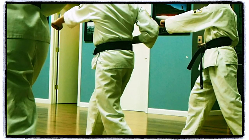 American Tae Kwon Do 2014