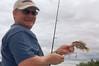Paul's tiny fish