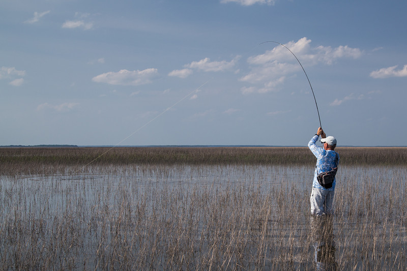 The next day we ventured out into the marsh before sunset to do some fly fishing for redfish (Dad fished, I took pictures).  This was taken at the very moment the fish bit... you can see the ripples.