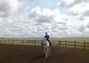 TJ & Rio 455 -- TJ working her own horse, Rio, a PRE gelding