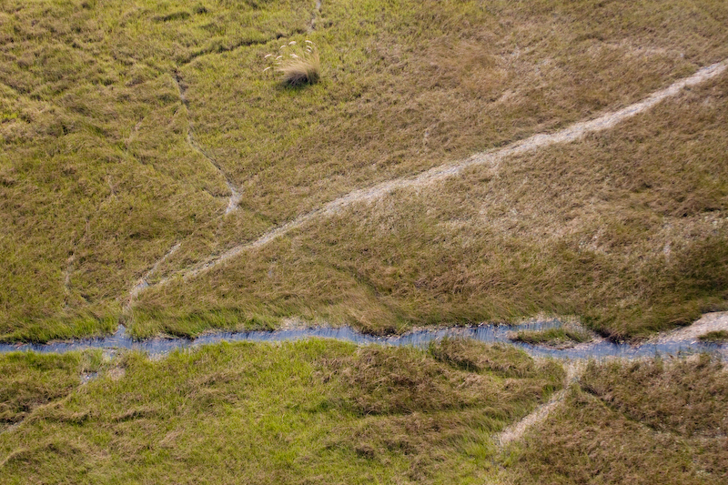 Animal trails from helicopter