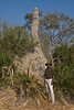 Our guide in Mombo was Sylis.   He's standing beside a giant termite mound.
