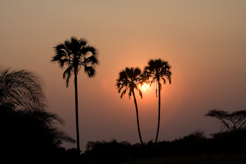 Our last sunset in Botswana