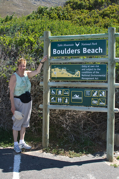 Boulder Beach.  Home to the African Penguins