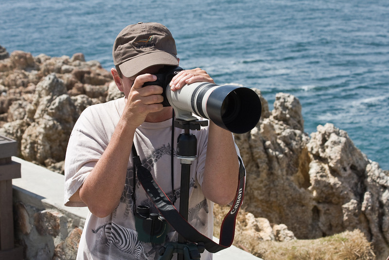 Shooting Whales from Hermanis