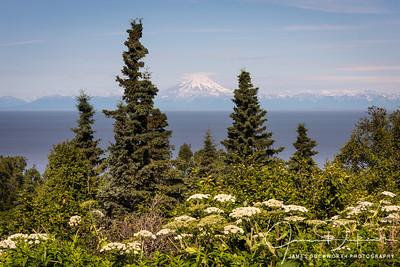 Redoubt Volcano View