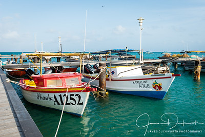 Aruba-10109