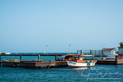 Aruba-10146