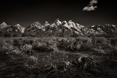 A Quiet Morning in the Tetons