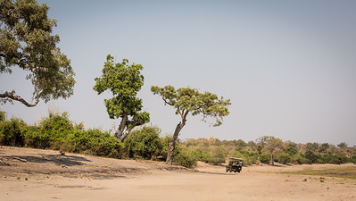 Chobe National Park Safari