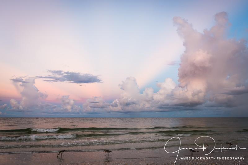 Marco Island Sunrise III