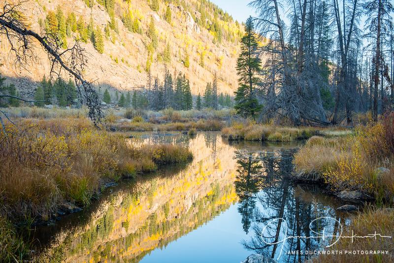 Fall along the Eagle River